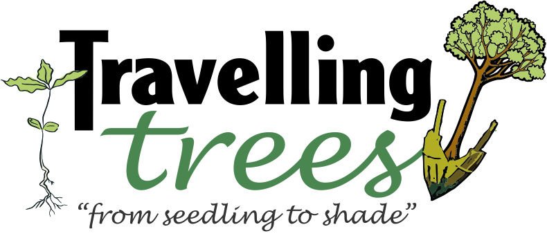Travelling Trees